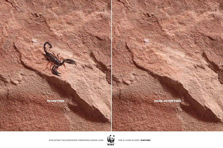 public-social-ads-animals-119