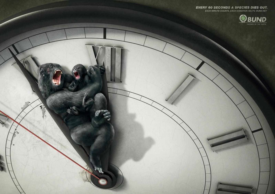public-social-ads-animals-5